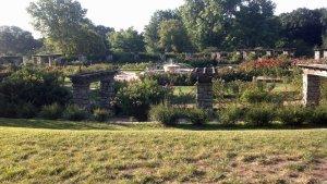 Rose Garden at Loose Park